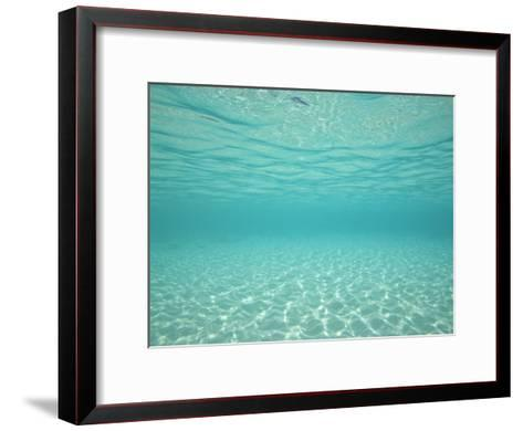 Underwater Shot of Clear Blue Water and White Sand-Michael Melford-Framed Art Print