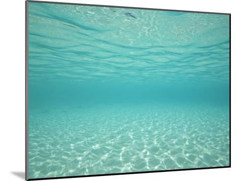 Underwater Shot of Clear Blue Water and White Sand-Michael Melford-Mounted Photographic Print