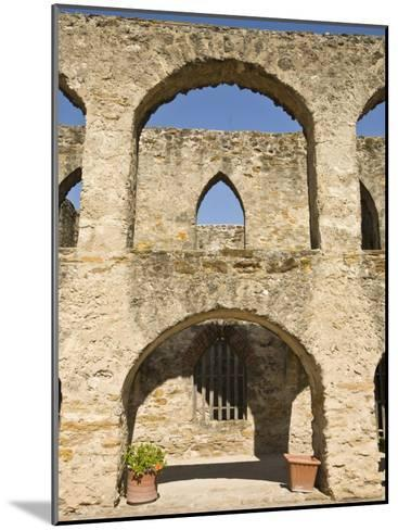 San Antonio, Texas, Mission San Jose and San Miguel De Aguayo-Richard Nowitz-Mounted Photographic Print