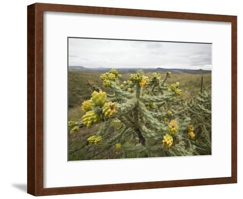 Marfa, Texas. Cibolo Creek Ranch Is a Working Ranch Hidden Away in the Chinati Mountains-Richard Nowitz-Framed Art Print