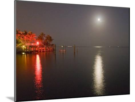 Full Moon and Red Light Reflecting in Water in a Tropical Setting-Mike Theiss-Mounted Photographic Print
