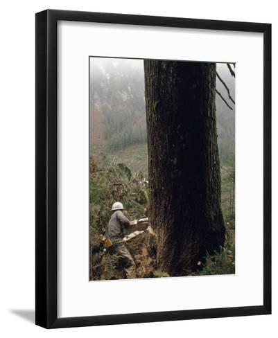 Logger with a Chainsaw Takes Down a Massive Old Tree-Chris Johns-Framed Art Print