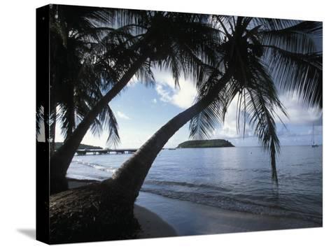 Waterfront at Esperanza on Vieques Island, Puerto Rico-Scott Warren-Stretched Canvas Print