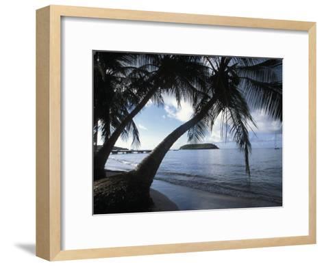 Waterfront at Esperanza on Vieques Island, Puerto Rico-Scott Warren-Framed Art Print