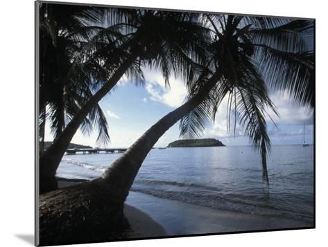 Waterfront at Esperanza on Vieques Island, Puerto Rico-Scott Warren-Mounted Photographic Print