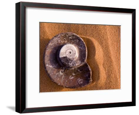 Seashell Fossil in the Sand-Abraham Nowitz-Framed Art Print