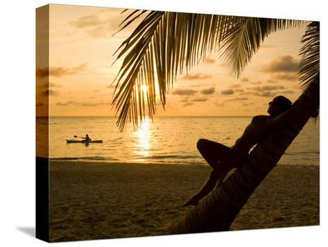 Woman Resting on a Palm Tree at Sunset, Sunset over the Caribbean Sea-Richard Nowitz-Stretched Canvas Print