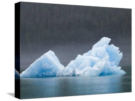 Blue Iceberg from the Sawyer Glacier-Rich Reid-Stretched Canvas Print