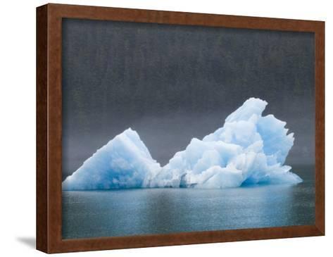 Blue Iceberg from the Sawyer Glacier-Rich Reid-Framed Art Print