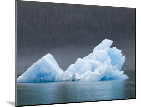 Blue Iceberg from the Sawyer Glacier-Rich Reid-Mounted Photographic Print