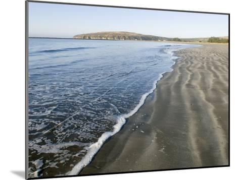 Waves Washing Up on Doran Beach at Bodega Bay-Rich Reid-Mounted Photographic Print