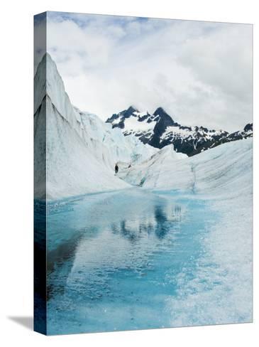 Tourist Trek Past Glacial Meltwater Pond on Mendenhall Glacier-James Forte-Stretched Canvas Print