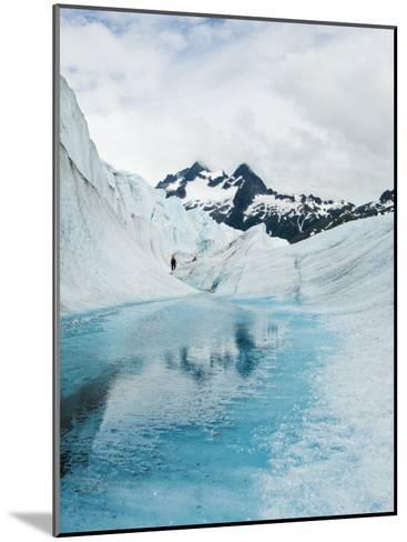 Tourist Trek Past Glacial Meltwater Pond on Mendenhall Glacier-James Forte-Mounted Photographic Print