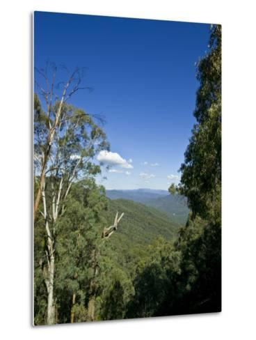 Mountains Covered in Dense Eucalyptus Forests Roll into the Distance-Jason Edwards-Metal Print