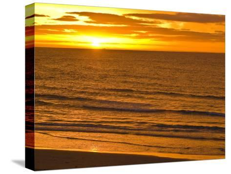 Dawn Rises Golden over Bass Straits Vast and Distant Horizon-Jason Edwards-Stretched Canvas Print