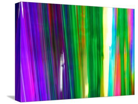 Colorful Plastic Tubes in San Francisco Plastics Shop-Raymond Gehman-Stretched Canvas Print