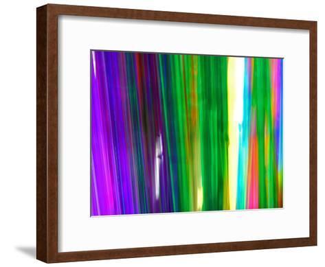 Colorful Plastic Tubes in San Francisco Plastics Shop-Raymond Gehman-Framed Art Print