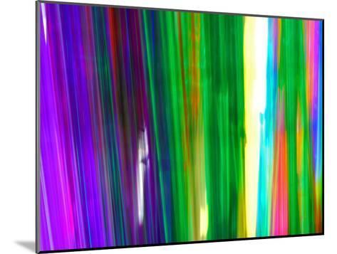 Colorful Plastic Tubes in San Francisco Plastics Shop-Raymond Gehman-Mounted Photographic Print
