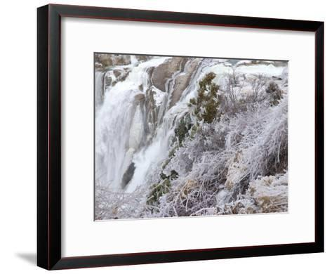 Winter Scene with Ice-Covered Plants in Front of Shoshone Falls-Darlyne A^ Murawski-Framed Art Print