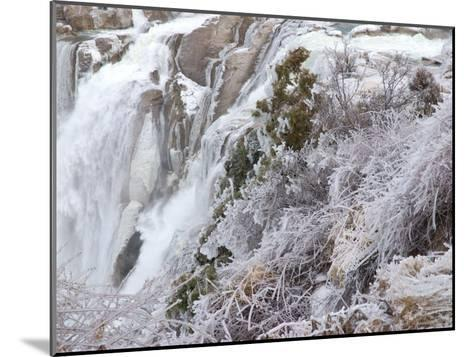 Winter Scene with Ice-Covered Plants in Front of Shoshone Falls-Darlyne A^ Murawski-Mounted Photographic Print