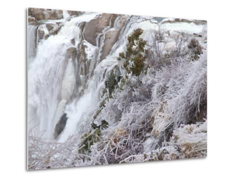 Winter Scene with Ice-Covered Plants in Front of Shoshone Falls-Darlyne A^ Murawski-Metal Print