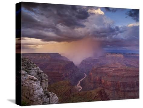 Monsoon Storm in the Grand Canyon-David Edwards-Stretched Canvas Print