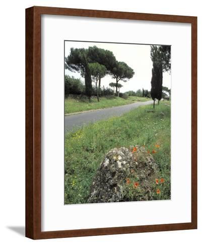 Appian Way, an Ancient Roman Road-Richard Nowitz-Framed Art Print