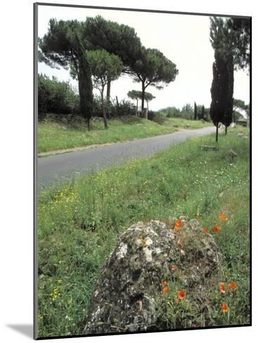 Appian Way, an Ancient Roman Road-Richard Nowitz-Mounted Photographic Print