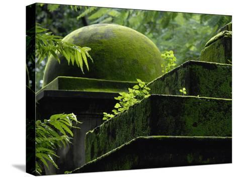 South Park Street Cemetery, Famous Cemetery During British East India-Steve Raymer-Stretched Canvas Print