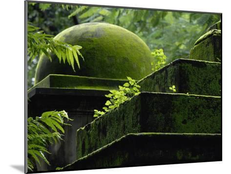South Park Street Cemetery, Famous Cemetery During British East India-Steve Raymer-Mounted Photographic Print
