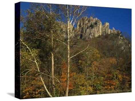 Seneca Rocks with Trees in Autumn Hues-Raymond Gehman-Stretched Canvas Print