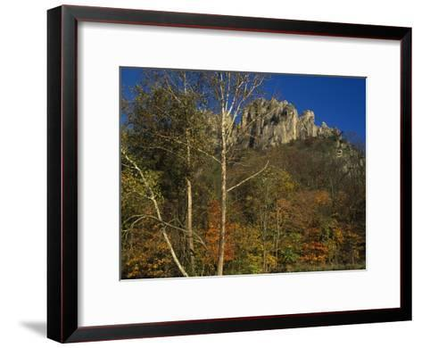 Seneca Rocks with Trees in Autumn Hues-Raymond Gehman-Framed Art Print