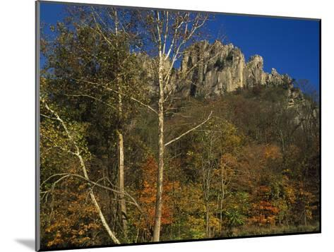 Seneca Rocks with Trees in Autumn Hues-Raymond Gehman-Mounted Photographic Print