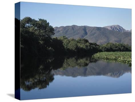 Along One of Many Waterways in the Pantanal of Western Brazil-Scott Warren-Stretched Canvas Print