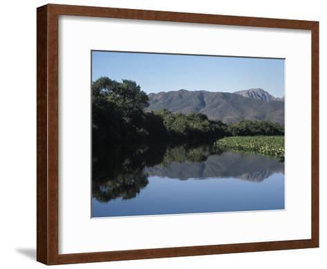 Along One of Many Waterways in the Pantanal of Western Brazil-Scott Warren-Framed Art Print