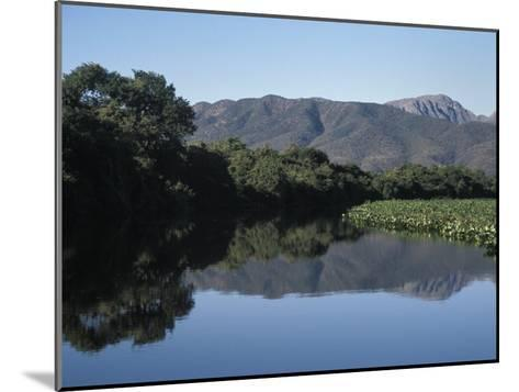 Along One of Many Waterways in the Pantanal of Western Brazil-Scott Warren-Mounted Photographic Print