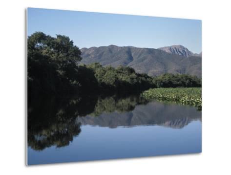 Along One of Many Waterways in the Pantanal of Western Brazil-Scott Warren-Metal Print