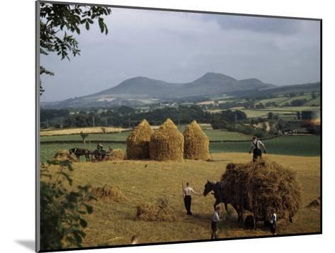 Men Harvest Oats Below Eildon Hills-B^ Anthony Stewart-Mounted Photographic Print