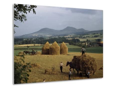 Men Harvest Oats Below Eildon Hills-B^ Anthony Stewart-Metal Print