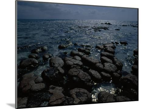 Survivors of the First Living Communities, Stromatolite Reefs Still Flourish in Shark Bay-O^ Louis Mazzatenta-Mounted Photographic Print