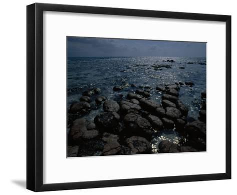 Survivors of the First Living Communities, Stromatolite Reefs Still Flourish in Shark Bay-O^ Louis Mazzatenta-Framed Art Print