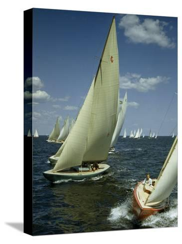 Sailboats Cross a Starting Line During a Regatta-B^ Anthony Stewart-Stretched Canvas Print