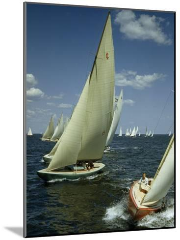 Sailboats Cross a Starting Line During a Regatta-B^ Anthony Stewart-Mounted Photographic Print