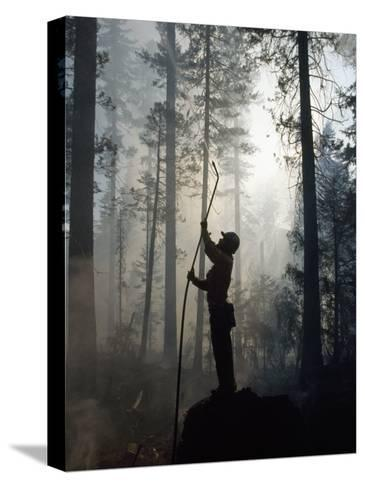 Firefighter Spraying Water Up into Trees in a Forest Fire-Chris Johns-Stretched Canvas Print