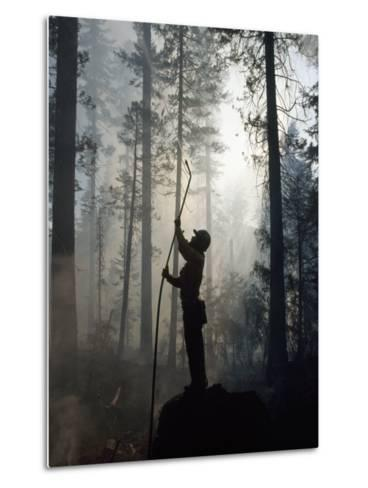Firefighter Spraying Water Up into Trees in a Forest Fire-Chris Johns-Metal Print