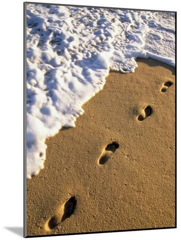 Footprints in the Sand, Near the Water's Edge-Michael Melford-Mounted Photographic Print