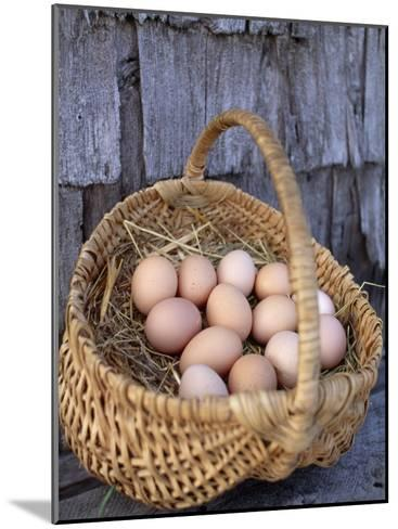 Basket of Brown Eggs-Michael Melford-Mounted Photographic Print