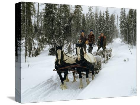 Loggers Haul Freshly Cut Timber on a Horse-Drawn Sleigh-B^ Anthony Stewart-Stretched Canvas Print