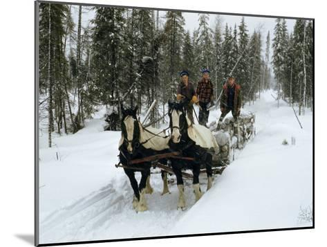 Loggers Haul Freshly Cut Timber on a Horse-Drawn Sleigh-B^ Anthony Stewart-Mounted Photographic Print