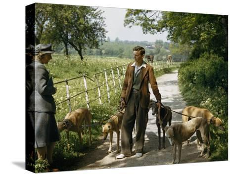 Woman Talks with a Man Walking Racing Greyhounds-B^ Anthony Stewart-Stretched Canvas Print